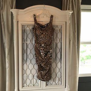 Cache cheetah dress